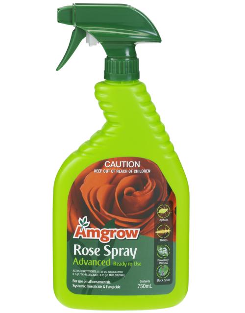 amgrow rose spray adv