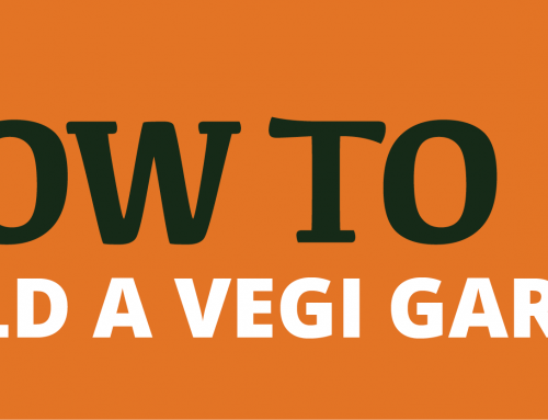 How To Build A Vegetable Garden